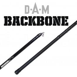 DAM Backbone bolo